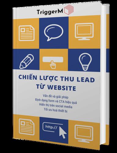 ebook-lead