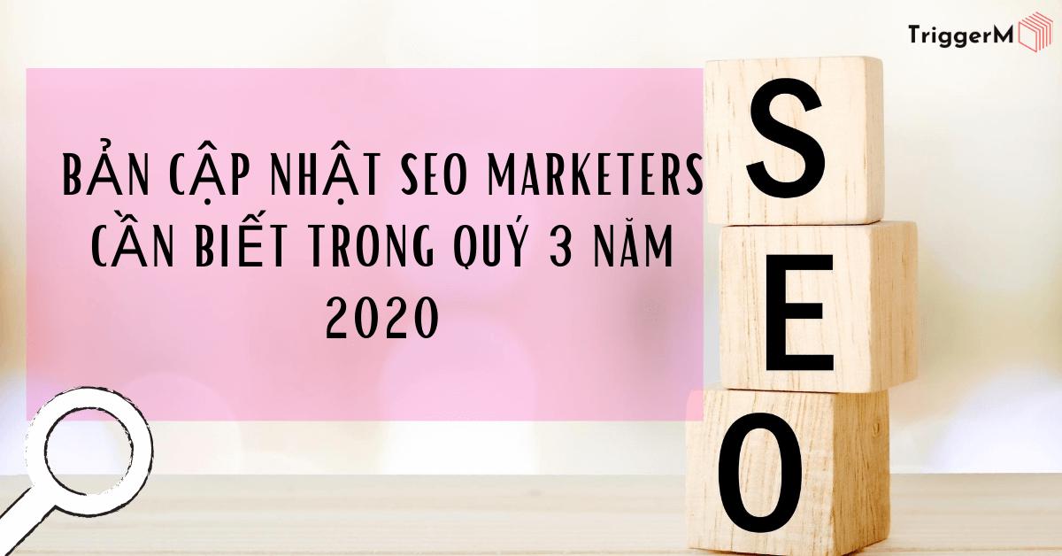 Bản cập nhật SEO Marketers cần biết trong Quý 3/2020