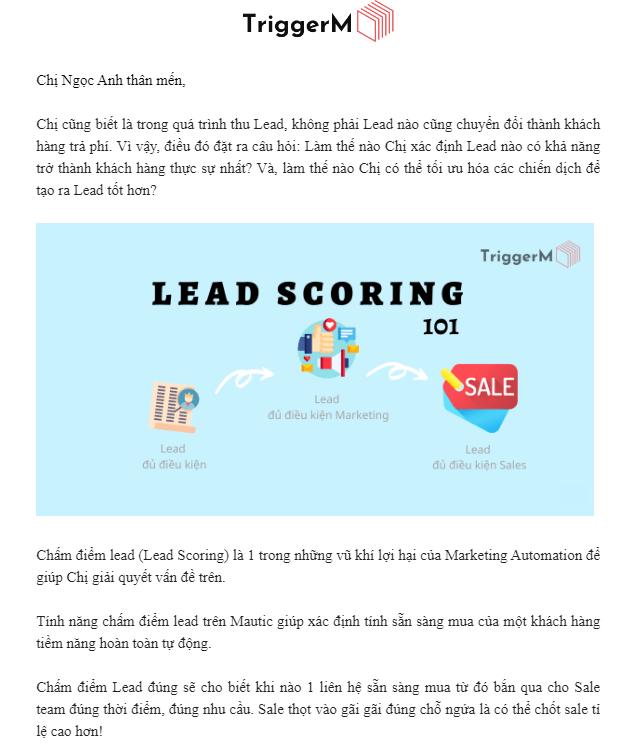 email giới thiệu công ty
